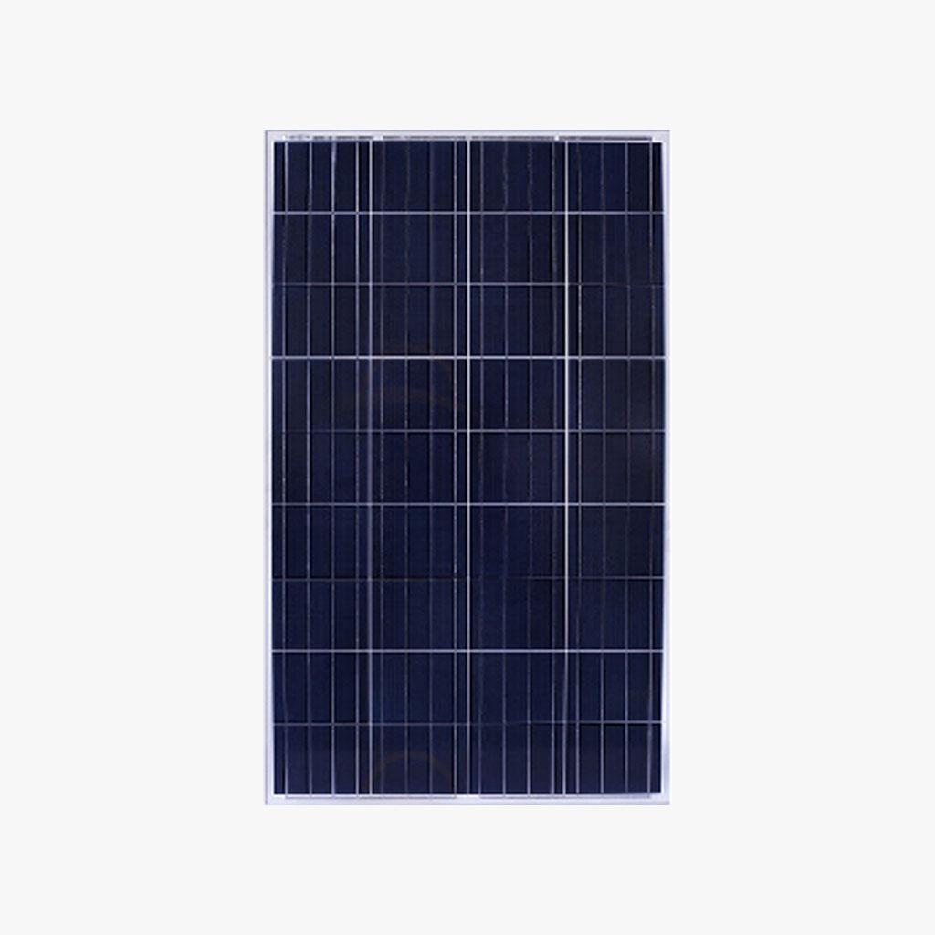 Vikram Solar 100Wp Polycrystalline Solar PV Module